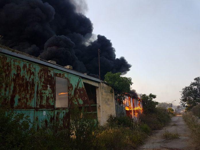 Vivai Rosso Antonio : Domenica infernale a bari: le fiamme divorano i vivai lavermicocca