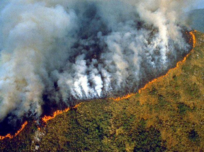 Amazzonia, protesta ambientalista a Consolato brasiliano a Milano